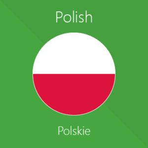 перевод на польский язык