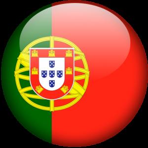 Перевод на португальский и с португальского