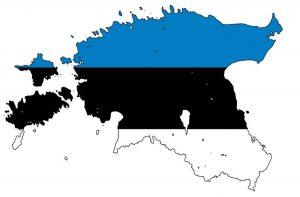 Перевод на эстонский и с эстонского