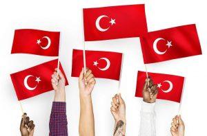 Перевод на турецкий и с турецкого