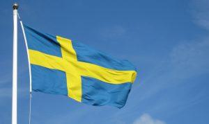 Перевод на шведский и с шведского